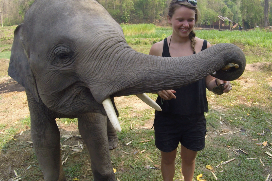 Feeding a baby Asian elephant in the Chiang Mai Family Sanctuary