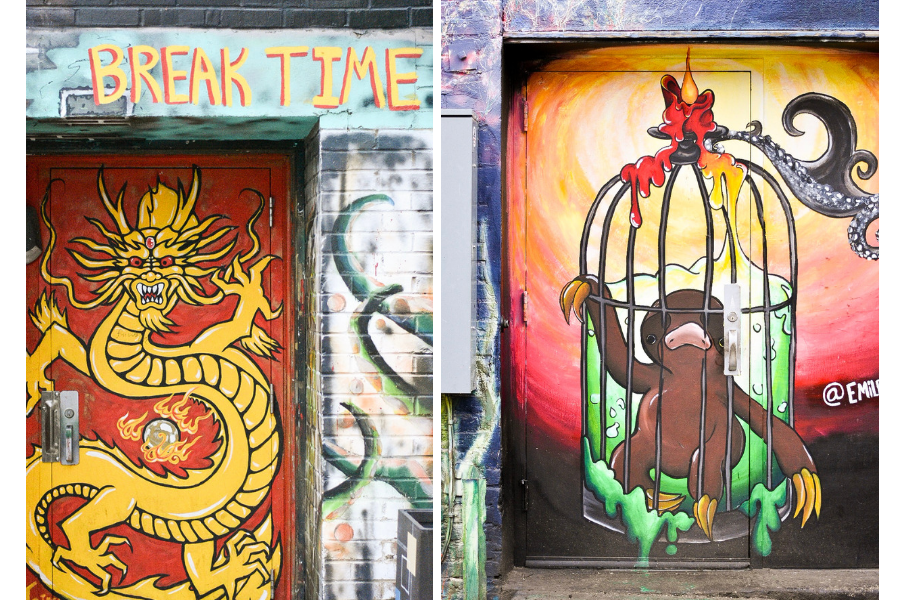 Street Art in Boise: Two Painted Doors - a dragon and a caged sloth